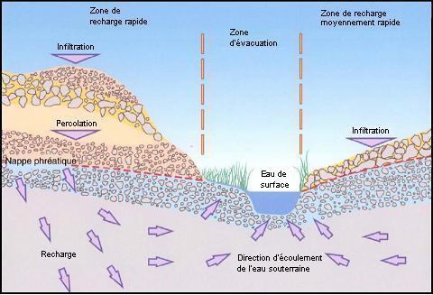 Schma montrant lcoulement de leau dans le sol depuis les zones de recharge vers les aquifres plus profonds et les zones dvacuation dans les eaux de surface